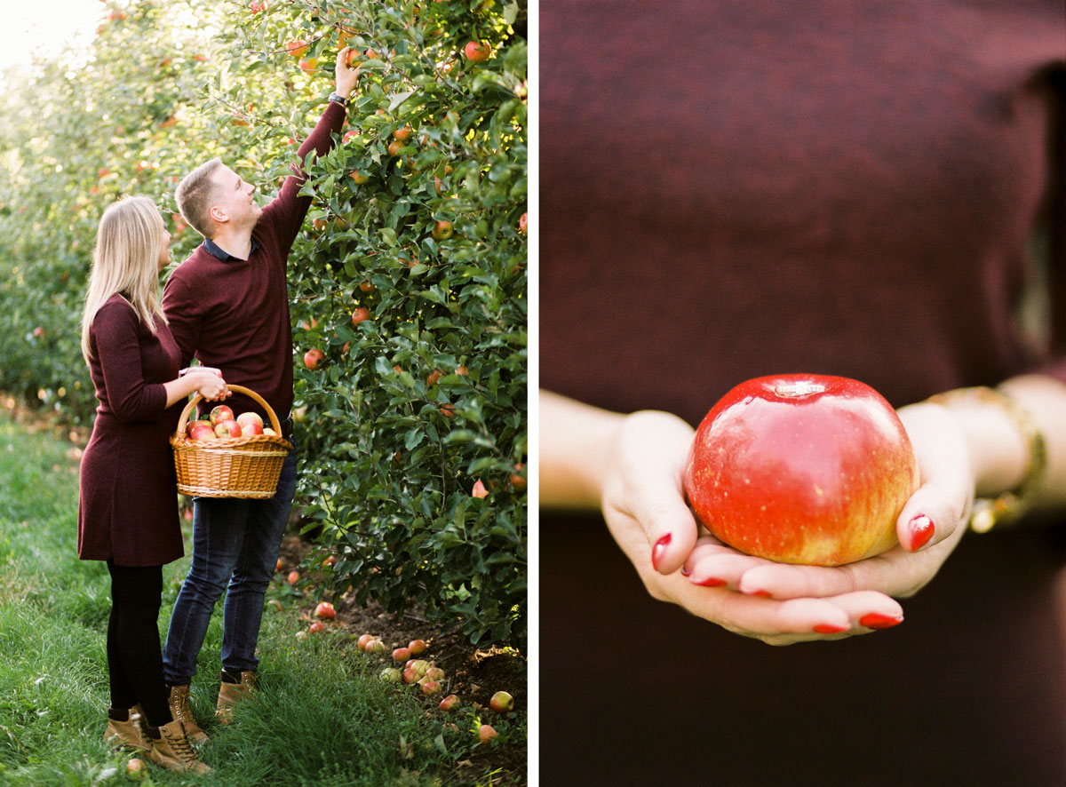 03-film-is-not-dead-apple-farm