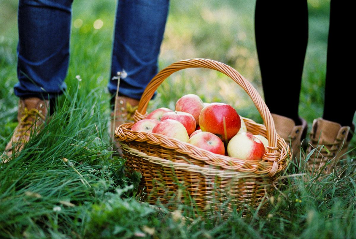08-fine-art-engagement-session-apple-farm